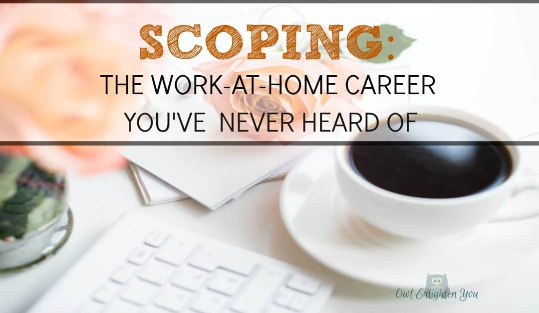 Work-At-Home Career As A Scopist